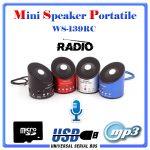 SPEAKER MINI WS-139RC